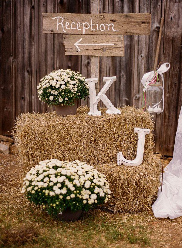 country rustic woodland wedding signs
