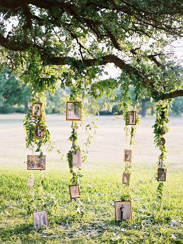 wedding photo display backdrops for outdoor wedding decorations