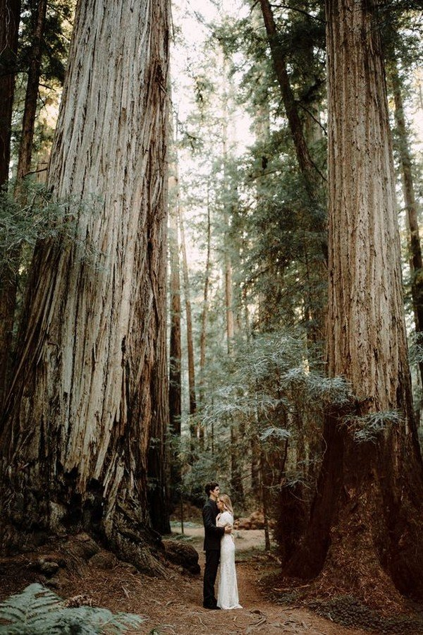 Redwood Forest elopement wedding photo ideas