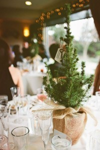 small pine trees chic rustic winter wedding centerpieces