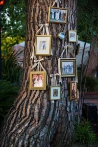 photo display ideas for rustic backyard weddings
