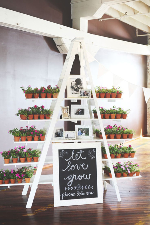 wedding photo and favors display with ladder