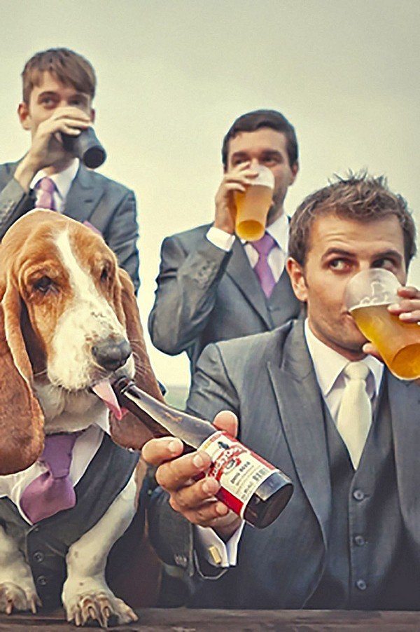 creative groomsmen wedding photo with dog