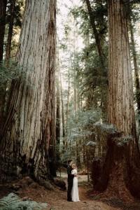 Redwood Forest elopement wedding photo ideas