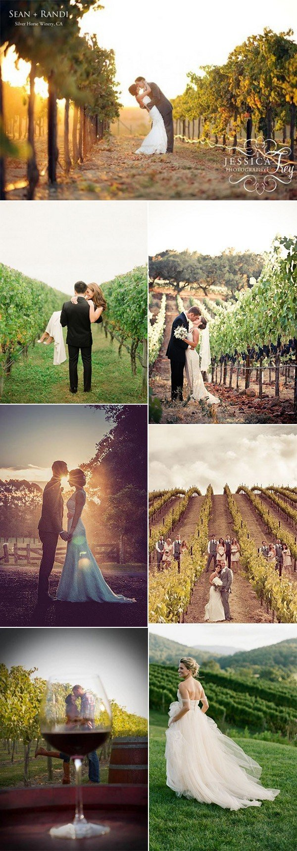 vineyard themed wedding photo ideas for 2018