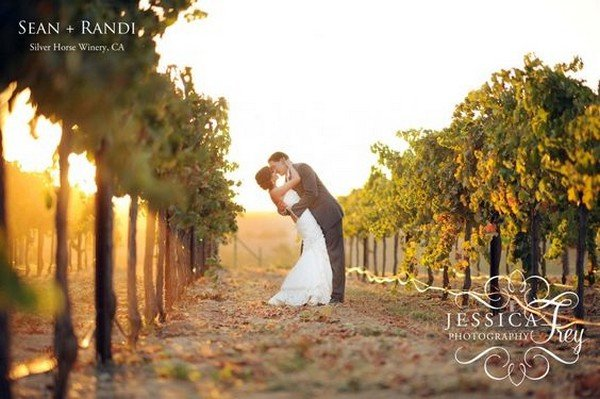 vineyard themed wedding photo ideas