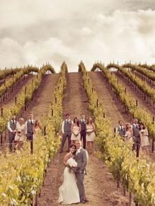 vineyard wedding photo ideas