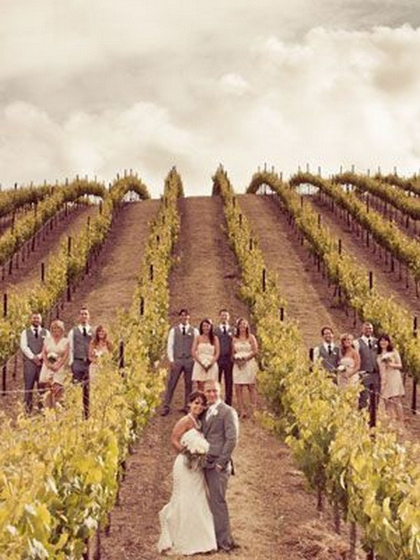 vineyard wedding photo ideas