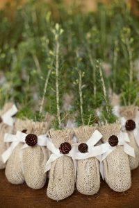eco-friendly tree saplings wedding favor ideas
