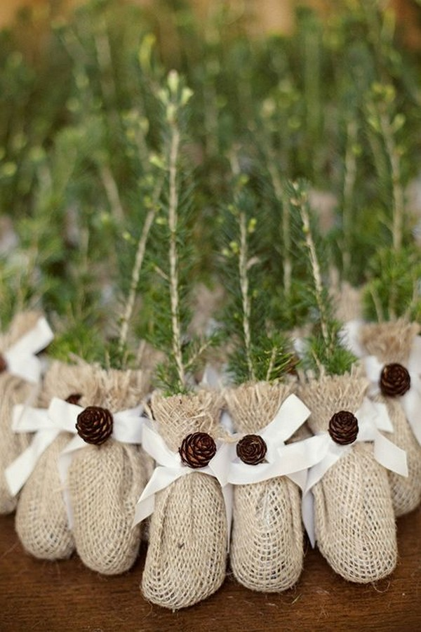 eco-friendly tree saplings wedding favor ideas