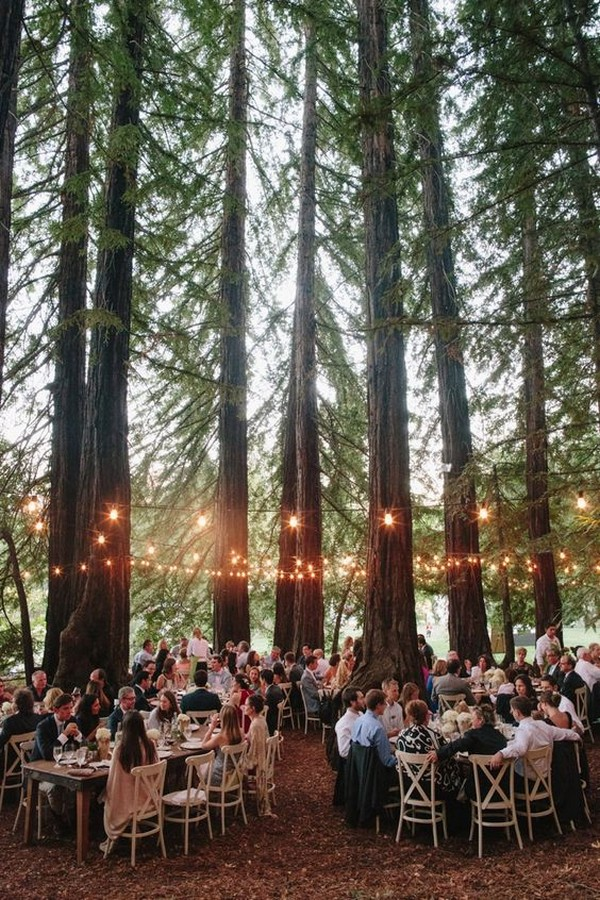 stunning wedding reception ideas with lights in the forest