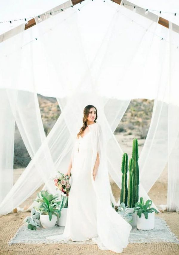 outdoor wedding backdrop ideas with white drapery and cactus