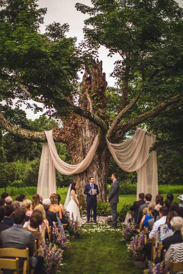 big tree with drapery wedding backdrop ideas