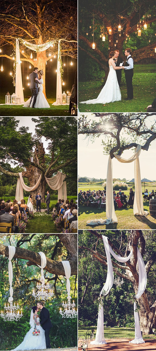 tree wedding backdrop ideas on a budget