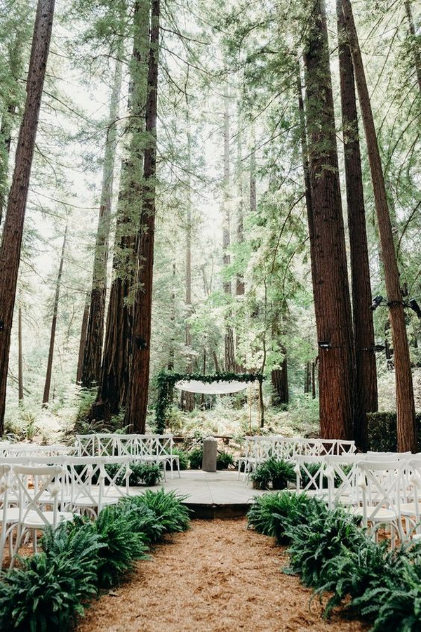 elegant redwood forest wedding ceremony ideas