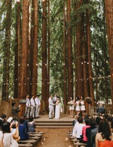 redwoods forest wedding ceremony ideas