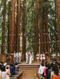 redwoods forest wedding ceremony ideas