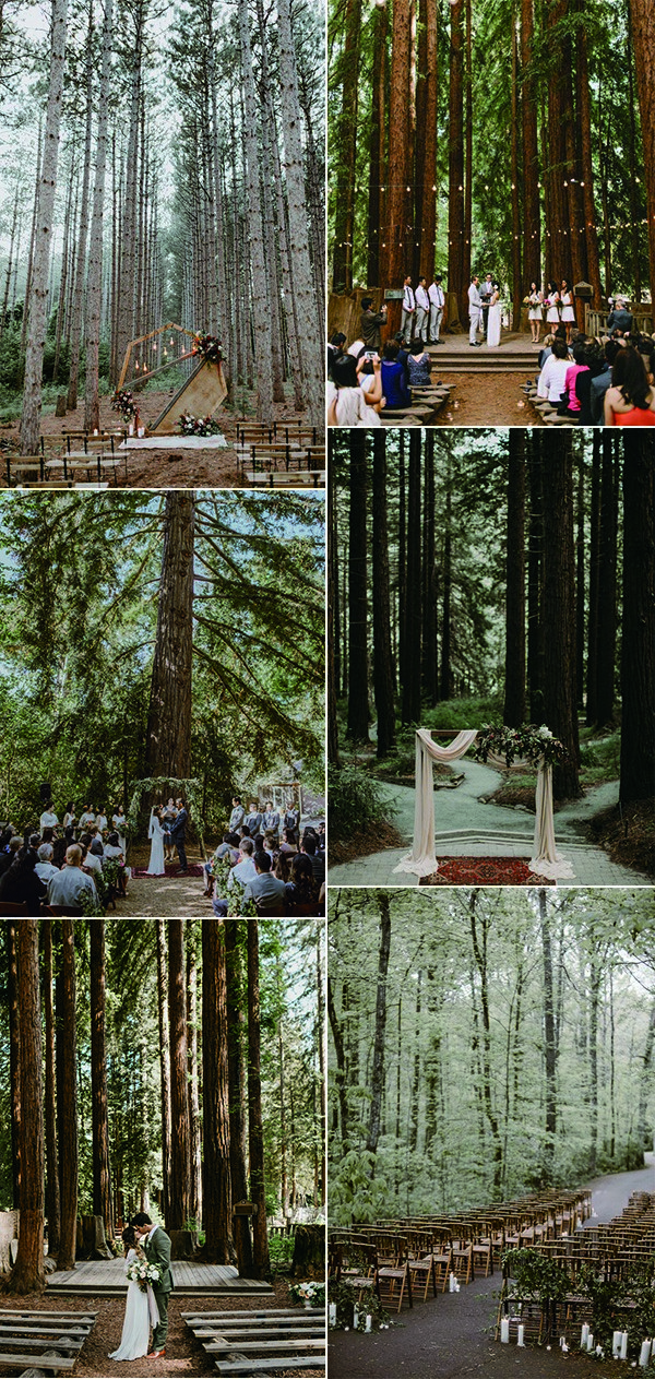 woodland forest wedding ceremony ideas