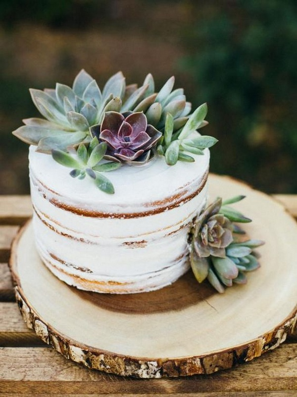 small wedding cake ideas with succulent