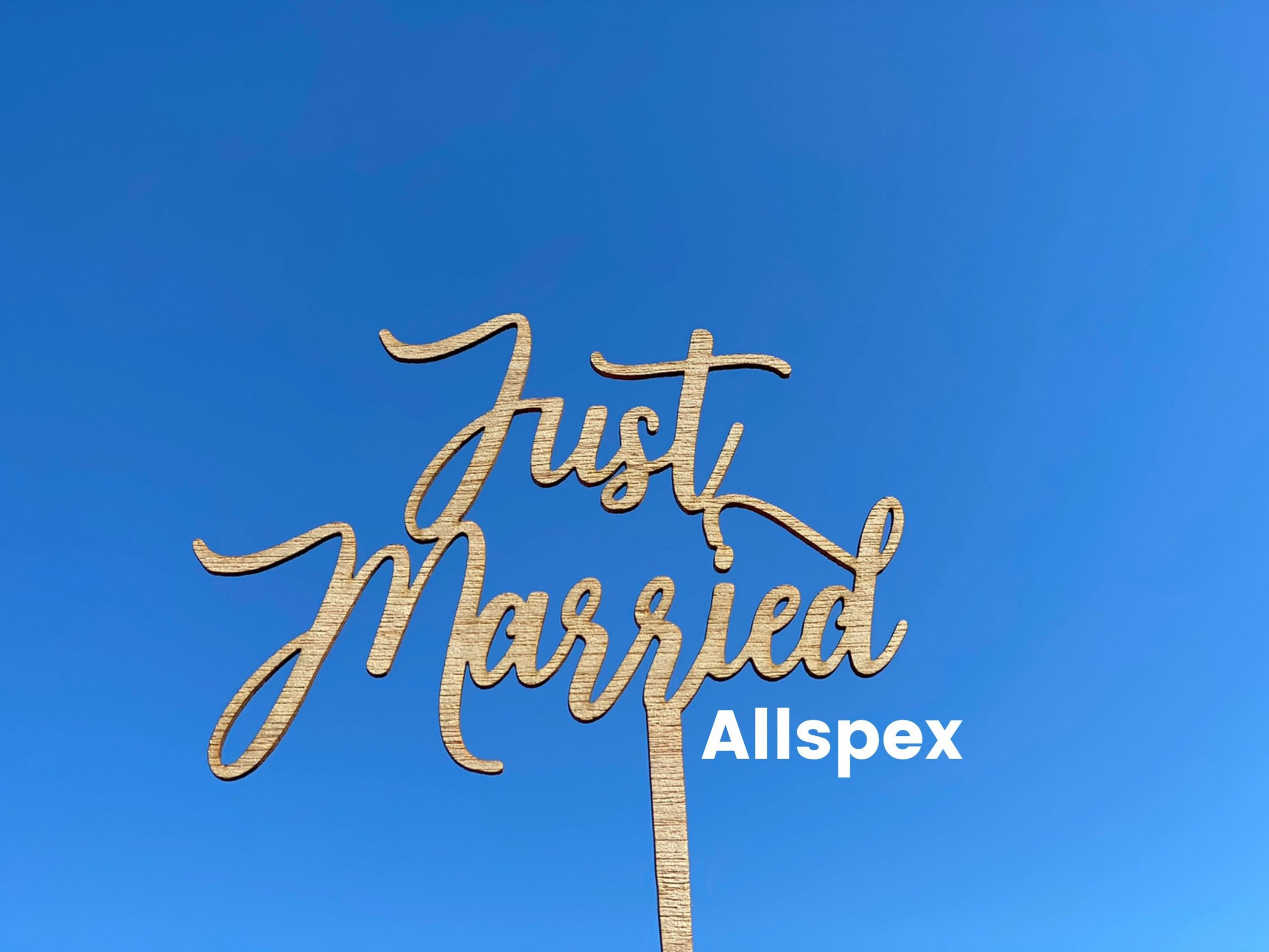 Wedding Cake Topper Read Just Married